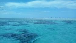 静かな海.jpg