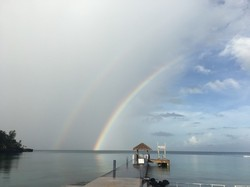 今朝の虹.jpg